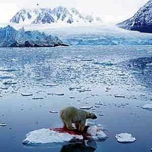 Biển Bắc cực nóng nhất 2.000 năm