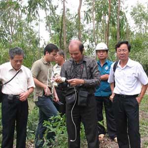Giải mã tia đất bí ẩn của TS Vũ Văn Bằng
