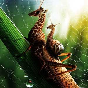Sự kết hợp giữa động vật có vú và côn trùng