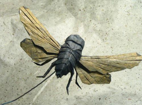 Bộ sưu tập côn trùng độc đáo bằng... giấy