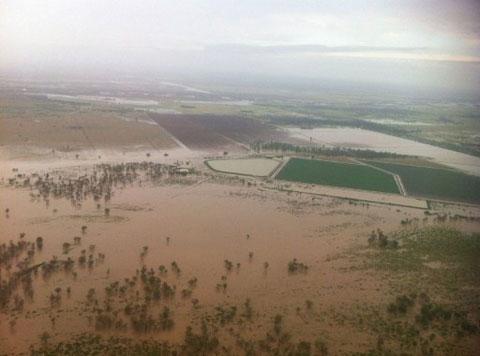 Hơn 10.000 người Australia kẹt trong lũ