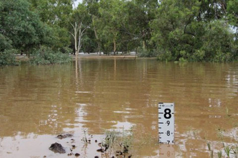 Nước lũ chạm mức 7,7 mét tại một khu vực ở thị trấn Charleville của bang New South Wales hôm 4/2.
