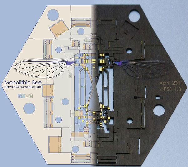 Mỹ chế tạo ong robot đầu tiên