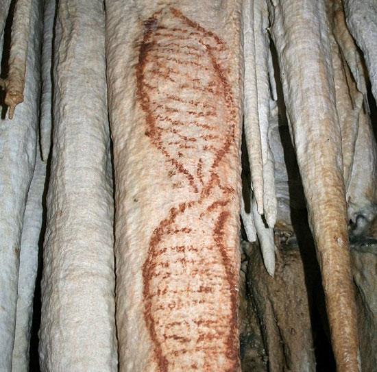 Những bức vẽ cổ xưa nhất của loài người