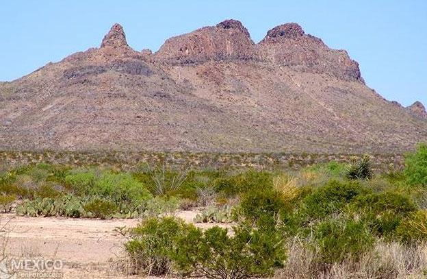 Một khối đá trong Vùng im lặng tại Mexico.