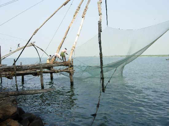 Việt-Hàn bàn kinh nghiệm quản lý, phát triển biển