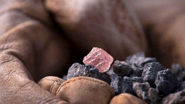Viên kim cương Argyle Pink Jubilee