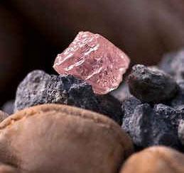 Australia: Khai quật kim cương hồng khổng lồ