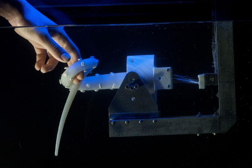 Robot bạch tuộc