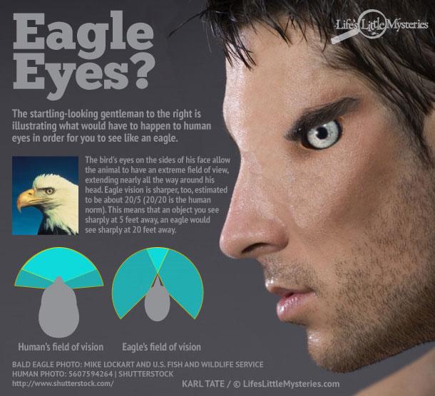 Kỳ diệu khi người có mắt như chim ưng