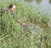 Cụ Rùa có thể là bảo vật quốc gia