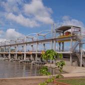 Nước mặn xâm nhập sâu trong mùa khô năm 2013