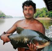 Hệ sinh thái nước ngọt của Amazon nhạy cảm với suy thoái môi trường