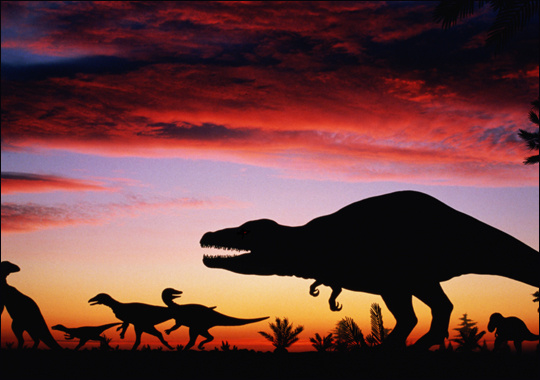Việc va chạm của thiên thạch với Trái đất là đòn quyết định khiến loài khủng long tuyệt chủng.