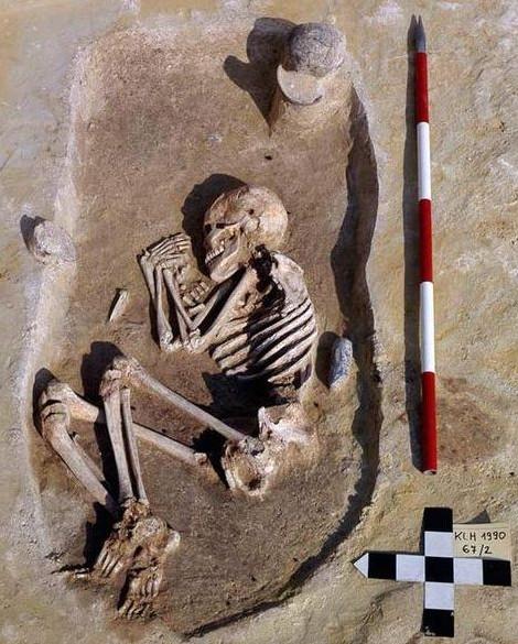 Nghiên cứu được dựa trên 300 bộ xương được tìm thấy trên khắp Trung Âu