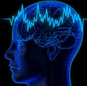 """Phát hiện """"vùng ma quỷ"""" trong não người"""