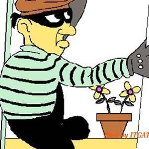 Vẽ đường cho cướp