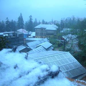 Sa Pa đang có tuyết rơi