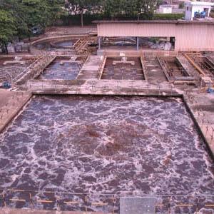 Xử lý nước ô nhiễm bằng vi sinh vật