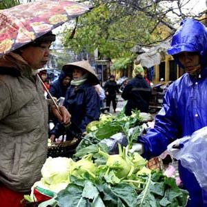 Không khí lạnh gây mưa và rét ở Trung Trung Bộ