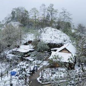 2011 - Năm của những kỷ lục về lạnh