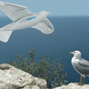 Robot mô phỏng mòng biển