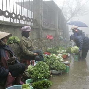 Bắc Bộ tiếp tục mưa rét, Nam Bộ có mưa trái mùa