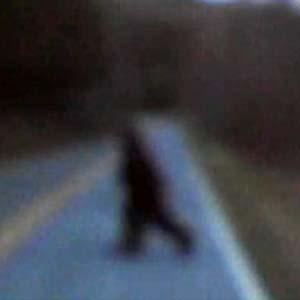 Xuất hiện quái vật Bigfoot ở Mỹ?