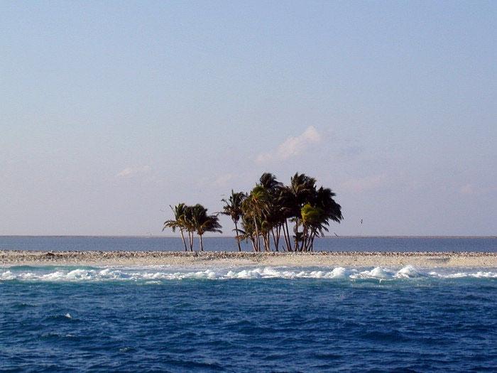 Nhà khoa học nghiên cứu đảo lạ ngoài khơi Mexico