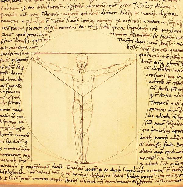 """Tác phẩm """"Người Vitruvius"""" của Giacomo Andrea. Có ý kiến nghi ngờ danh họa Leonardo da Vinci đã sao chép bức họa này để tạo nên kiệt tác của mình."""