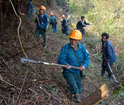 Cháy khoảng 100 ha rừng ở Vườn quốc gia Hoàng Liên