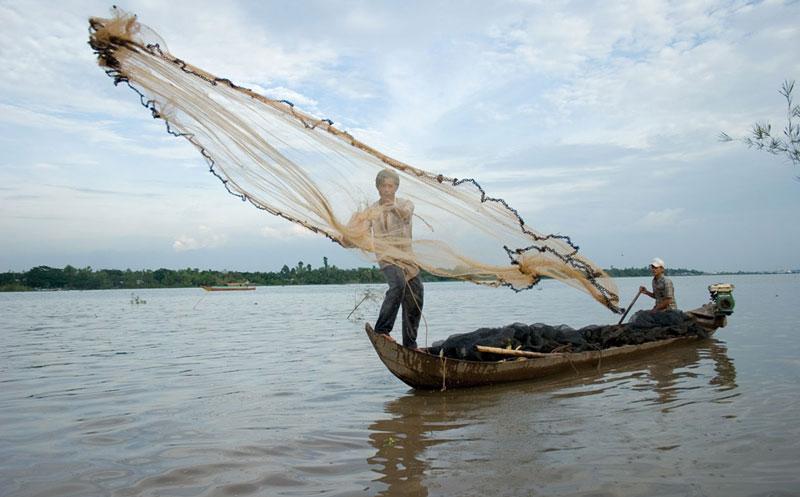 Đập nhỏ đe dọa tới các loài cá trên sông Mekong