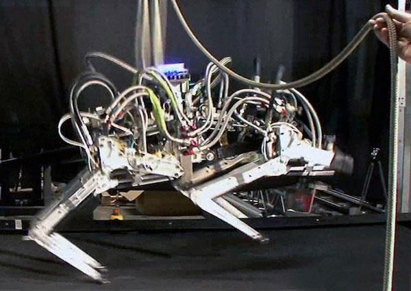 Mỹ chế tạo robot quân sự siêu tốc