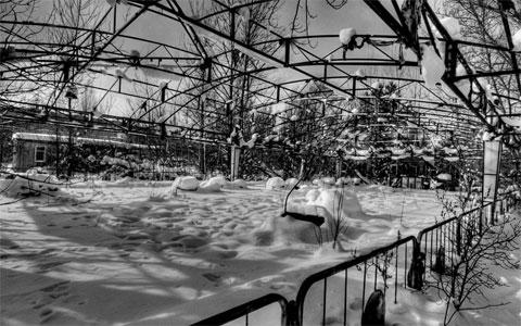 Một khu chợ bỏ hoang bị tuyết phủ.