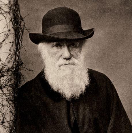 """Sáng tỏ nghi án Darwin """"đạo"""" ý tưởng"""