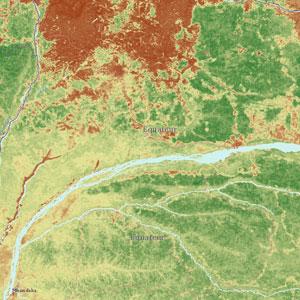 Bản đồ online về trữ lượng các-bon rừng mưa toàn cầu