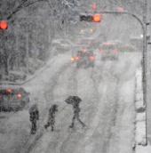 Bão tuyết lớn ở Nhật Bản làm tám người thiệt mạng