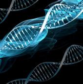Nhật Bản tự tin về tương lai của ngành y học tái sinh