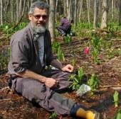 Vai trò quan trọng của các loài côn trùng hoang dã với nông nghiệp