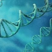 Không thể xác định tổ tiên bằng kiểm tra ADN