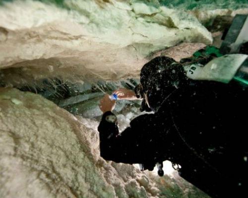 Các thợ lặn Úc đã phát hiện ra hang động có lớp  chất nhày kỳ lạ nằm sâu dưới biển tại vùng Nullarbor