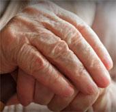 """Thần dược"""" chống lão hóa, ung thư và bệnh Alzheimer"""