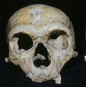 Người Neanderthal tuyệt chủng vì mắt quá to?