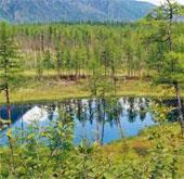 Nga, Mông Cổ sẽ lập khu bảo tồn xuyên quốc gia