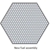 Thiết kế ý niệm lò phản ứng hạt nhân plutonium lớn