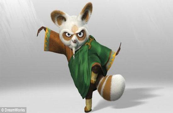Loài gấu này đã được lấy làm hình mẫu cho nhân vật Thầy Shifu trong bộ phim hoạt hình nổi tiếng Kungfu Panda.