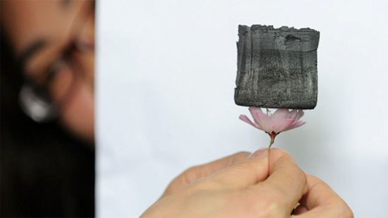 Vật liệu rắn nhẹ nhất thế giới có thể cân bằng bởi cánh hoa anh đào