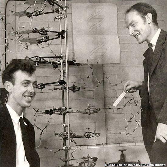 Francis Crick (bên phải) và lá thư ông gửi cho con trai để giải thích về cấu trúc DNA.