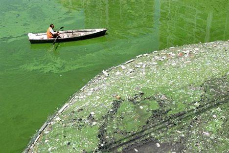 Một con kênh bị ô nhiễm ở Trung Quốc.
