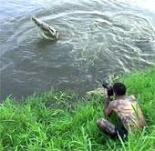 Video: Cá sấu phi thân đòi ăn thịt nhiếp ảnh gia